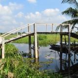 2019: Most ke škole v Ambari