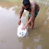 2019: Rybníky a ryby pro děti z Monoshapary