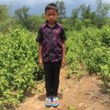 Noyon  Khyang