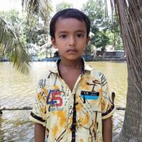 Rajib Mollick